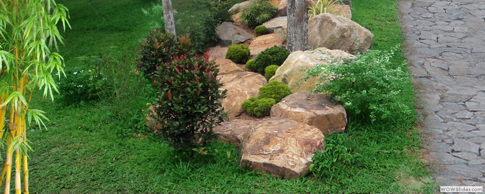 House Landscaping Pictures Sri Lanka : Raised garden bed instructions design pictures sri